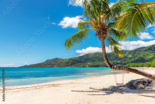 Foto op Plexiglas Tropical strand Famous Beau Vallon beach with coconut palm tree on Mahe island, Seychelles.