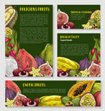 Exotic tropical fruit banner, poster template set - 148158410