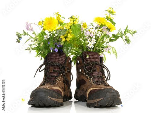 Wanderschuhe mit Blumen Poster