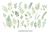 Hand drawn watercolor illustrations. Botanical clipart ( leaves, flowers, swirls, herbs, branches). Floral Design elements. Perfect for wedding invitations, greeting cards, blogs, posters and more - 148470232