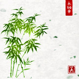 Green bamboo on handmade rice paper background. Traditional oriental ink painting sumi-e, u-sin, go-hua. Contains hieroglyphs - eternity, freedom, happiness, beauty