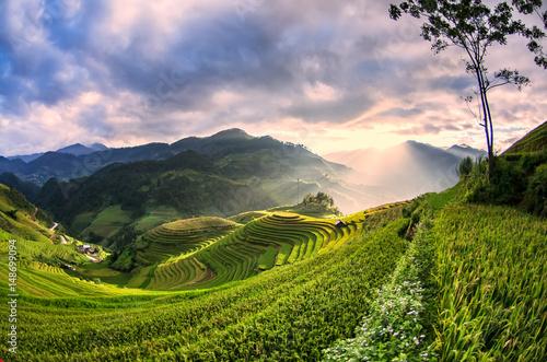 Rice fields on terraced of Mu Cang Chai, YenBai, Vietnam, soft focus
