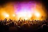 Concert Crowd - 148710639