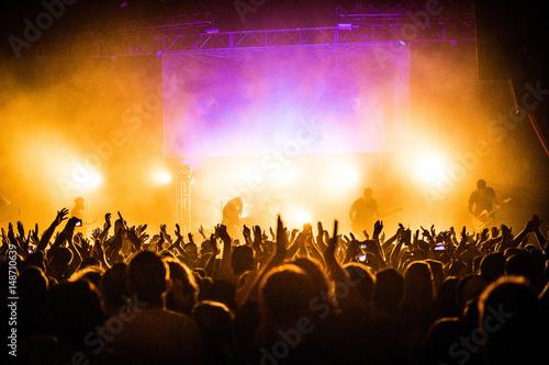 Concert Crowd Poster