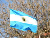 flag of Argentina waving outdoors with trees on background