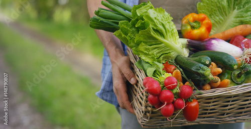 Wall mural Portrait of a happy young farmer holding fresh vegetables in a basket. On a background of nature The concept of biological, bio products, bio ecology, grown by own hands, vegetarians, salads healthy