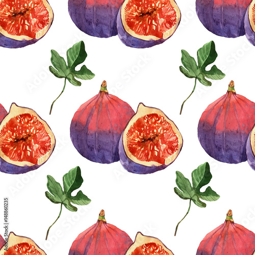 Watercolor painting on white background of fruit fig - 148860235