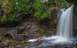 Waterfall at Hilton Falls