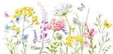Watercolor wild flowers