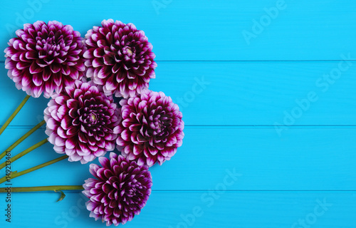 Flowers on blue painted wooden planks. Poster