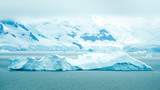 The shapes of icebergs drifting in Paradise Bay, Antarctica, are carved by the sea and winds.- 149428454