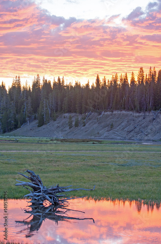 Pink Sunrise Dawn cloudscape over Pelican Creek in Yellowstone National Park in Poster