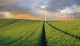 Wind turbines in the spring field