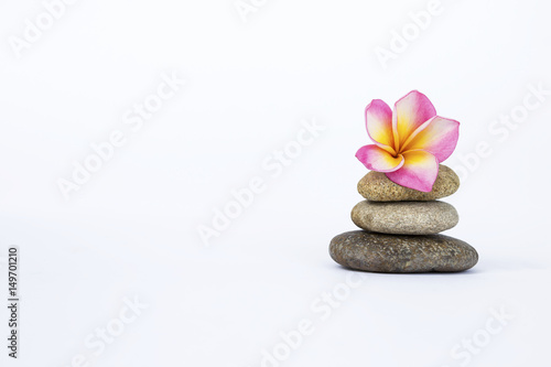In de dag Spa Plumeria flower on Zen stone isolate on white background, spa concept background