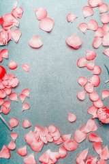 Pretty pink pastel petals of flowers on turquoise rustic background, flat lay, top view, frame, vertical