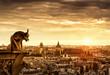 Gargoyle over Paris at sunset, France