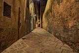 Florence, Tuscany, Italy: narrow alley at night