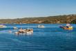 Fishing boats in Dalcahue village, Chiloe island, Chile