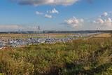Завод Фольксваген в Калуге. Стоянка автомобилей, готовая продукция. Калуга, Россия.