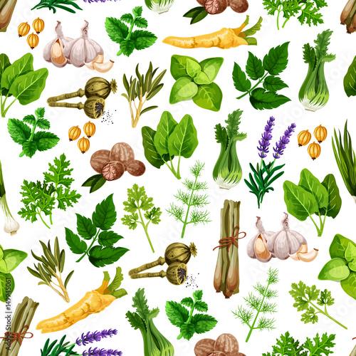 Fototapeta Vector seamless pattern of spice herb seasonings