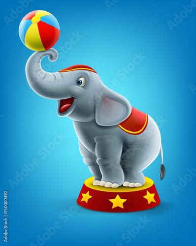 Fotobehang Zoo elephant show