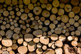 Big pile of logs as background. .