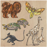 An hand drawn vector collection, pack of animals. Colored line art. - 150201604