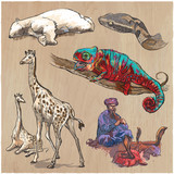 An hand drawn vector collection, pack of animals. Colored line art. - 150203476