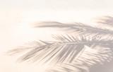 ombre de palmes sur plage de sable doré - 150439256