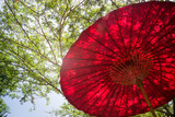 Red Umbrella In Garden Resort