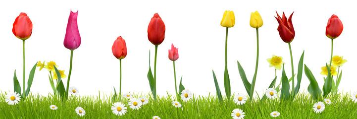 Frühling 436