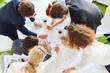 Planung in Teamarbeit mit viel Statistik - 150559016
