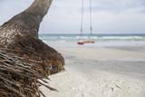 Swing on a tropical beach - 150595058