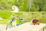 Picnic in nature in the forest. Wooden table and basket. Traveling by bike