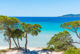 Pine trees and turquoise water in Alghero