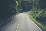 forest nature road way, vintage filter image
