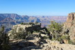 Grand Canyon Arizon - 151095247