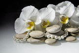 flat stones on a white glass on the background of white orchids