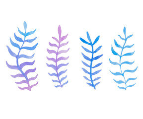 Hand drawn watercolor blue twig set on the white background. Vector.