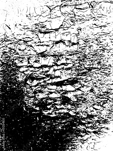 Fototapeta Abstract grunge pattern black and white. Dust overlay distress background. For create vintage, aging with noise, grain, small particles and lines. Vector illustration. Urban design. Cracked paint