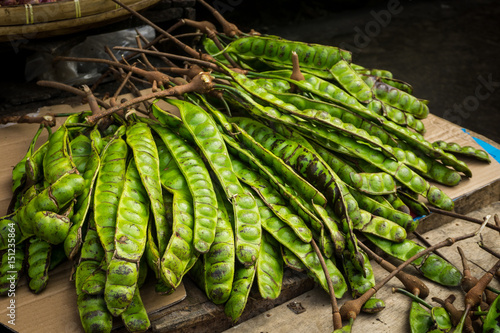 petai exotic food bean photo taken in bogor jakarta indonesia Poster