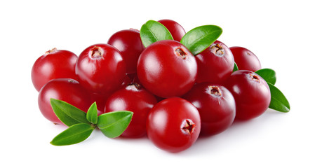 Cranberry with leaves isolated on white background. Full depth of field. © Tim UR