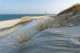 Sanddüne mit Strandhafer am Strand Ellenbogen Insel Sylt - 151257244