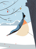 Nuthatch moves virtuously along the tree trunk