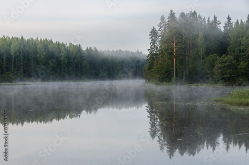 Early morning on the forest lake. Fog. Reflection on water. - 151333874