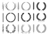 Laurel Wreaths and Branches Vector Collection - 151402689