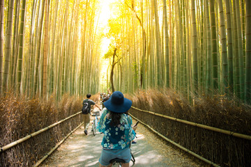Tourist is cycling for sightseeing at Arashiyama bamboo forest in Kyoto, Japan.