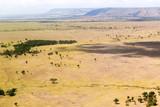 view to maasai mara savannah landscape in africa
