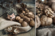 Toy hedgehog and walnuts, still life, diptych, macro
