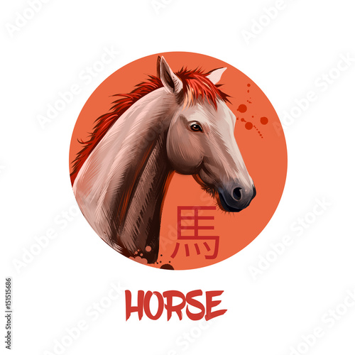 Poster Horse chinese horoscope character isolated on white